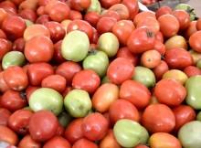 Fresh tomamtoes